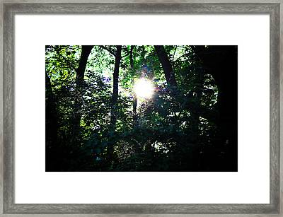 Out Of The Darkness Framed Print by Bill Cannon