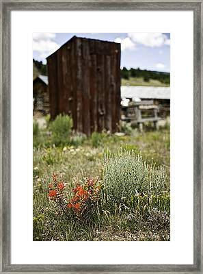 Outhouse Path Framed Print by Melany Sarafis