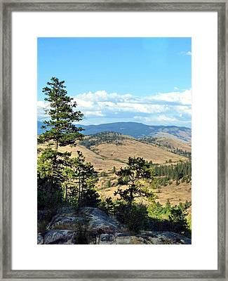 Vista 14 Framed Print by Will Borden