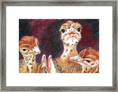 Outsdoorn Babes Framed Print by Vicki Ross