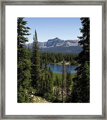 Overlooked Framed Print by Irwin-Scott