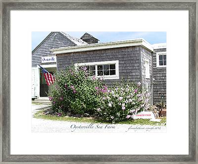 Oysterville Sea Farm Cooked Crab Framed Print by Glenna McRae
