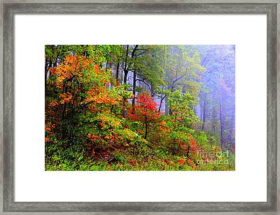 Painted Autumn Framed Print by Carolyn Wright