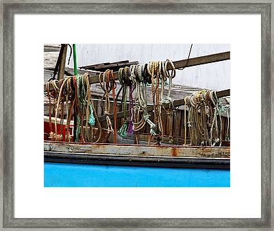 Painted Rope Coils Framed Print by Brenda Giasson