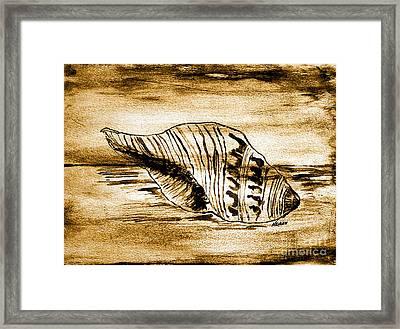 Painted Seashell Framed Print by Marsha Heiken