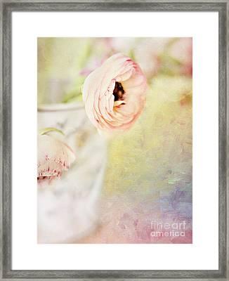 Painterly Pink Ranunculus In Vase Framed Print by Susan Gary