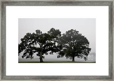 Pair Framed Print by Amanda Barcon