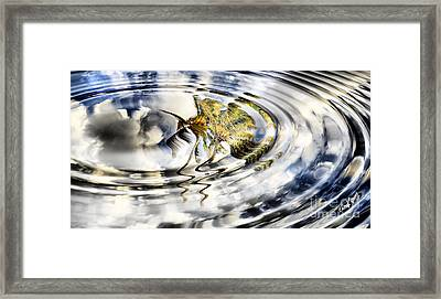 Palm Reflections Framed Print by Cheryl Young