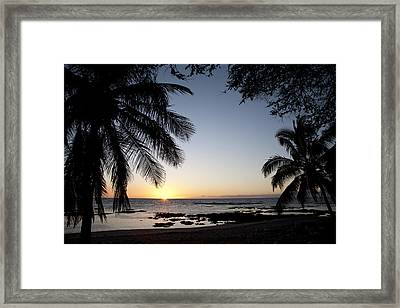 Palm Sunset Framed Print by Peter French