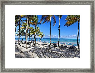 Palm Trees Shaded Beach Framed Print by George Oze