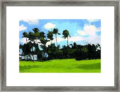 Palms At Kapiolani Park Framed Print by Douglas Simonson