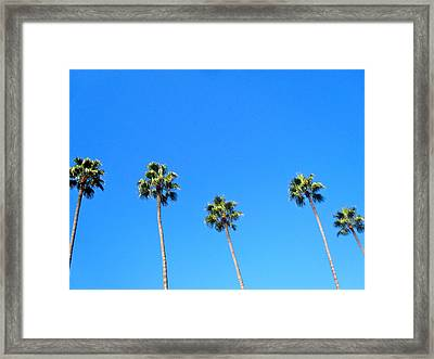 Palms Framed Print by Jon Berry OsoPorto
