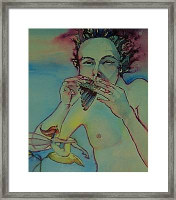 Pan Framed Print by Jackie Rock