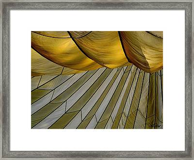 Parachute Shade Framed Print by David Salter