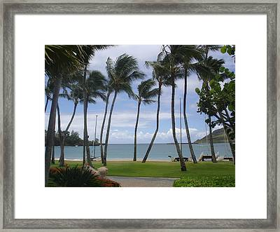 Paradise  Framed Print by Dee  Savage