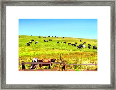 Pastoral Landscape . 7d16962 Framed Print by Wingsdomain Art and Photography