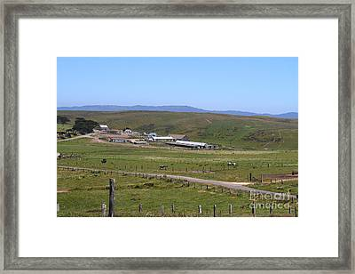 Pastoral Landscape Of Point Reyes California . 7d15958 Framed Print by Wingsdomain Art and Photography