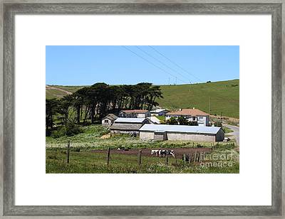 Pastoral Landscape Of Point Reyes California . 7d16047 Framed Print by Wingsdomain Art and Photography