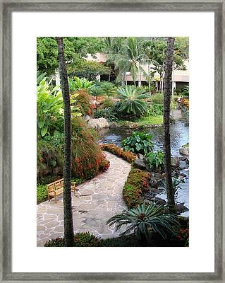 Path To Paradise Framed Print by Dee  Savage