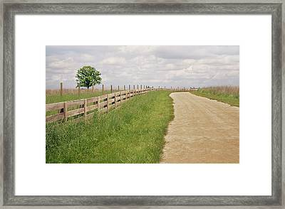 Pathway Surrounded By Wooden Fence Framed Print by Kathryn Froilan