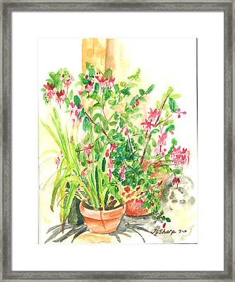 Patio Pots Framed Print by Teresa J Sharp
