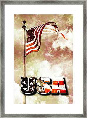 Patriotism The American Way Framed Print by Phill Petrovic