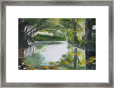 Peaceful Pond Framed Print by Tessa Dutoit