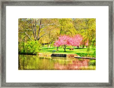 Peaceful Spring II Framed Print by Darren Fisher