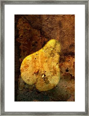 Pear In Stone Framed Print by John Wong