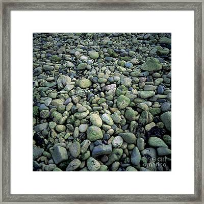 Pebbles Framed Print by Bernard Jaubert