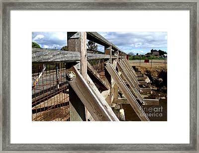 Pedestrian Bridge At Point Isabel In Richmond California . 7d15084 Framed Print by Wingsdomain Art and Photography