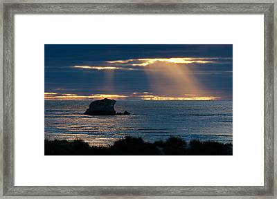 Peeking Through Framed Print by Heather Thorning