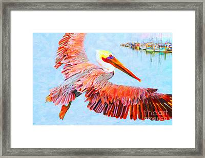 Pelican Flying Back To The Docks Framed Print by Wingsdomain Art and Photography