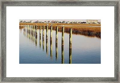 Pelican On Posts Framed Print by Paulette Thomas