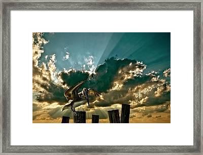 Pelican Sky Framed Print by Meirion Matthias