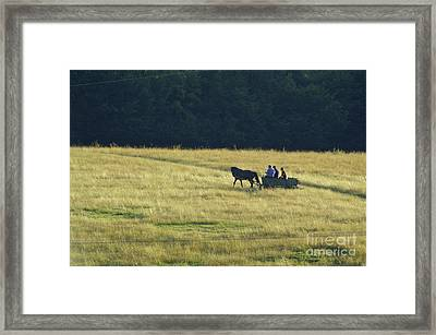 Peoples Framed Print by Odon Czintos