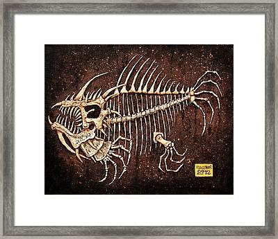 Pescado Seis Framed Print by Baron Dixon