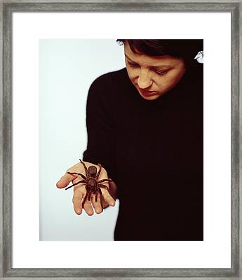 Pet Tarantula Framed Print by Lawrence Lawry