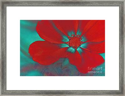 Petaline - T23b2 Framed Print by Variance Collections