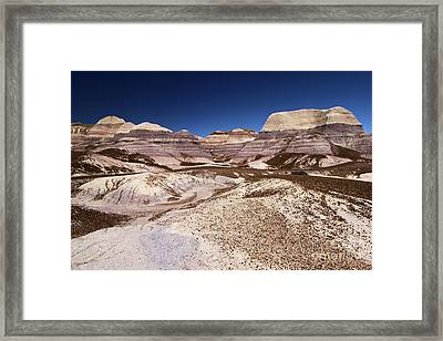 Petrified Forest Blue Mesa Framed Print by Adam Jewell