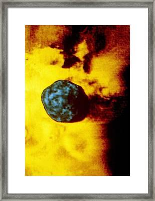 Phobos 2 Spacecraft Photo Of Martian Moon Phobos Framed Print by Ria Novosti