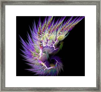Phoenix's Wing Framed Print by Lourry Legarde