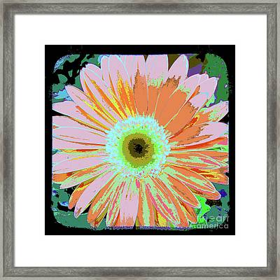 Photography Art Floral Framed Print by Ricki Mountain