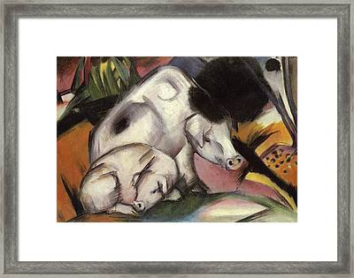 Pigs Framed Print by Franz Marc