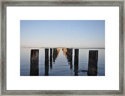 Pilings From An Old Pier Framed Print by Bill Cannon