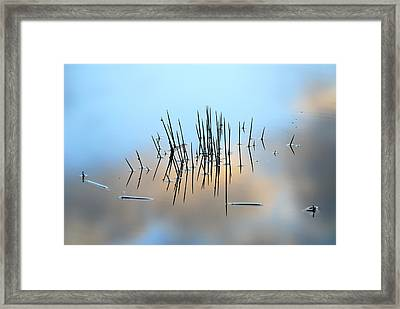 Pinchos Framed Print by Guido Montanes Castillo