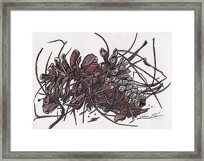 Pine Cones On Table Framed Print by Jon Gore