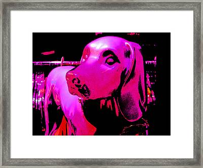 Pink And Purple Pooch Framed Print by Kym Backland