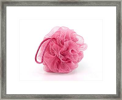 Pink Bath Puff Framed Print by Blink Images