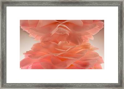 Pink Cloud Framed Print by Bobby Villapando